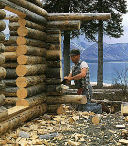 Dick Proenneke trimming the cabin wall logs